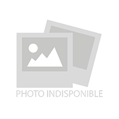 Disney Loungefly - Portefeuille Raiponce Pascal Flower - 16x12CM